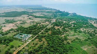 Bà Rịa - Vũng Tàu: Xây sân bay rộng 250 ha trên đảo Gò Găng
