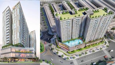 """Chủ đầu tư Phú Cường – Kiên Giang """"được phép bán lúa non"""" tại dự án chung cư Sophia, lỗi do soạn thảo?"""