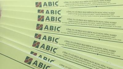 Sau nửa năm, bảo hiểm ABIC báo lãi hơn 167 tỷ đồng, tổng tài sản tăng 7%