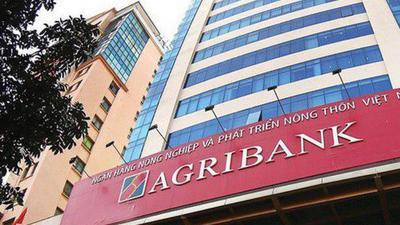 Agribank tiếp tục 'đại hạ giá' khoản nợ hơn 300 tỷ đồng của Tập đoàn Xuân Lãm