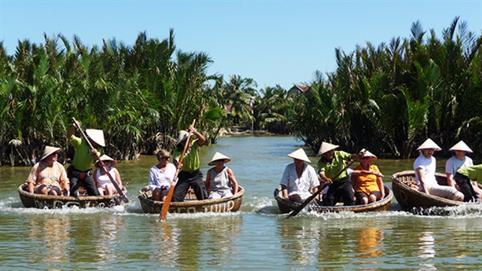 Quảng Nam muốn chuyển đổi 1ha rừng dừa lấy đô thị: Băn khoăn