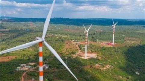 Xin chuyển rừng tự nhiên làm điện gió: Câu hỏi lớn