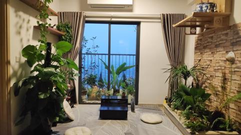 Cần lưu ý điều gì khi nuôi dưỡng cây xanh trong nhà?