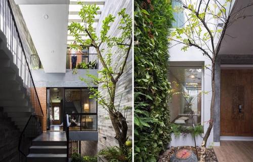 Các cách đơn giản và tiết kiệm để đưa thiên nhiên vào ngôi nhà