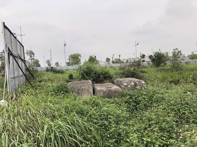 Sốt đất và bài học cay đắng từ 'vườn rau bất đắc dĩ' The Diamond Park của Videc ở Mê Linh - Ảnh 5