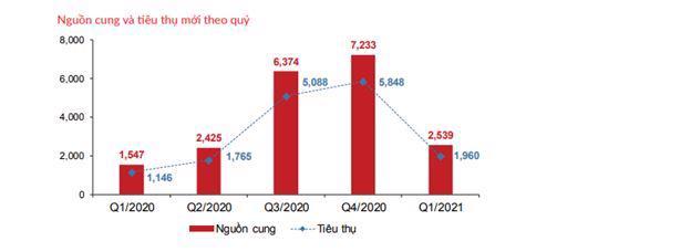 Diễn biến trái chiều thị trường bất động sản TP. Hồ Chí Minh quý 1/2021 - Ảnh 2