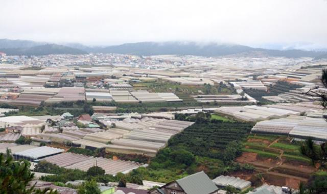 """Lâm Đồng: Dự án Khu Công nghiệp – Nông nghiệp Tân Phú """"chết yểu"""" do không có nhà đầu tư - Ảnh 2"""