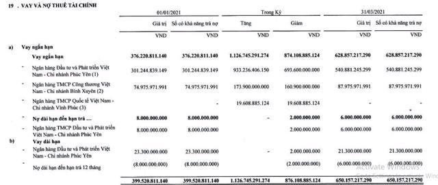 Nguồn: BCTC hợp nhất quý 1/2021 tại TDS