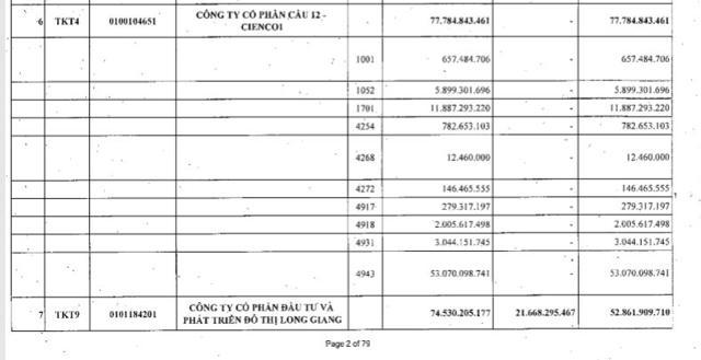 Lilama Hà Nội, Sông Đà, Long Giang Land và loạt doanh nghiệp bất động sản bị 'bêu tên' nợ thuế - Ảnh 2