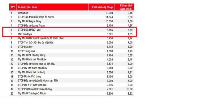 TNR Holdings và Hano – Vid có khối lượng phát hành gần 17.000 tỷ đồng trái phiếu trong năm 2020. Nguồn: SSI.