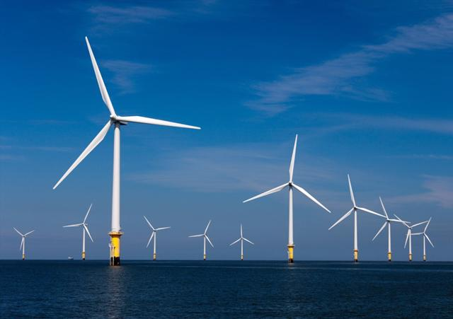 Trong lúc EVN cắt giảm điện từ năng lượng tái tạo, ông lớn xây dựng lại 'đổ bộ làm' điện gió - Ảnh 1