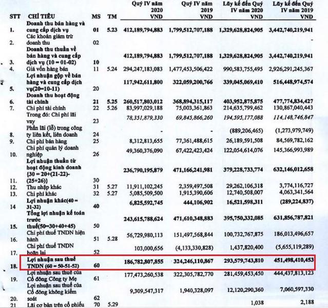 Nguồn: Báo cáo tài chính hợp nhất quý 4/2020 của Hải Phát Invest.