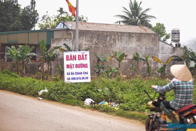 Hậu sốt đất: Nhà đầu tư rao bán cắt lỗ nhưng không ai mua - Ảnh 1