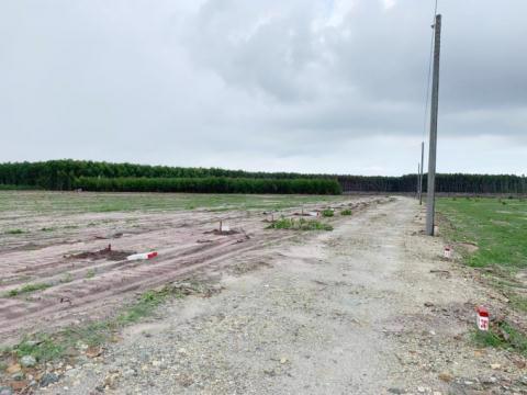 Bà Rịa - Vũng Tàu: Hàng loạt dự án phân lô, Sở TN&MT tuýt còi sau khi tách thửa hàng loạt - Ảnh 3