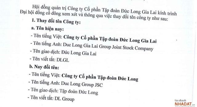 Nguồn: Tài liệu ĐHĐCĐ thường niên 2021 của DLG