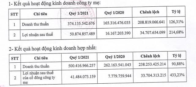 Dự án nghìn tỷ của DIC Corp được Phó Thủ tướng chỉ đạo rà soát tiến độ triển khai - Ảnh 3