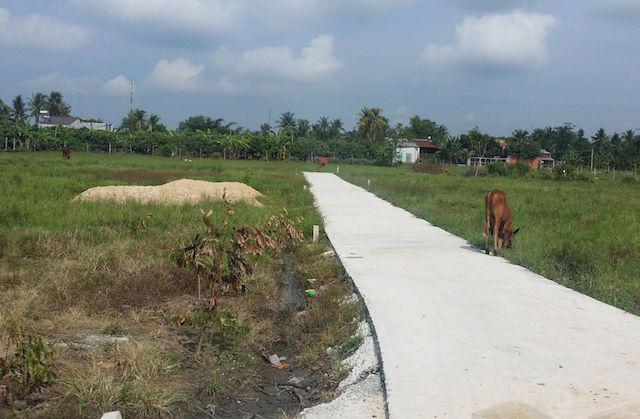 UBND tỉnh Bà Rịa – Vũng Tàu yêu cầu xử nghiêm trường hợp tự mở đường giao thông để phân lô bán nền đất nông nghiệp.