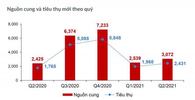 Bất động sản TP.HCM và các tỉnh phụ cận 6 tháng cuối năm 2021 - Ảnh 1