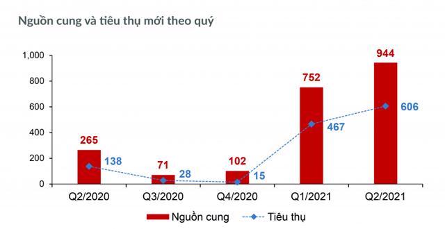 Bất động sản TP.HCM và các tỉnh phụ cận 6 tháng cuối năm 2021 - Ảnh 2