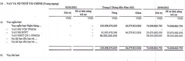 Từ quý 1 đến quý 2, nợ vay tại TDS ghi nhận hơn 74 tỷ đồng.(Nguồn: BCTC quý 2/2021)