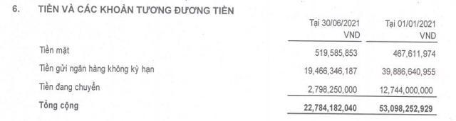 DRH Holdings bất ngờ báo lỗ quý sau 8 năm, 'kho tiền mặt' cạn dần - Ảnh 2