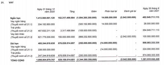 Nợ dài hạn tại Phát Đạt (PDR) cao gấp đôi tài sản dài hạn, nợ phải trả chiếm 62% tổng tài sản - Ảnh 8