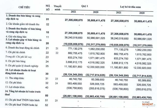 Một số chỉ tiêu tài chính quý 1/2021 của RIC.
