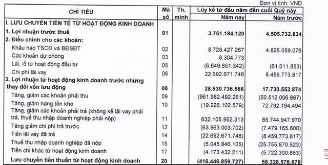 Nợ dài hạn của LDG Group tăng đột biến hơn 150%, lãi vỏn vẹn chỉ 1 tỷ đồng trong 6 tháng đầu năm 2021 - Ảnh 1