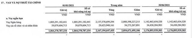 Thép Tiến Lên (TLH): Lãi cao nhất kể từ khi niêm yết nhưng lại 'có vấn đề' với dòng tiền kinh doanh - Ảnh 5