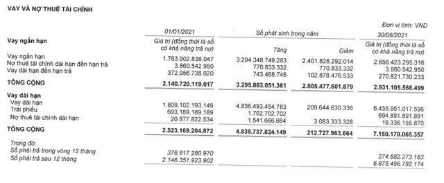 Vinaconex (VCG): Kinh doanh thua lỗ nhưng nợ vay cao ngất - Ảnh 4