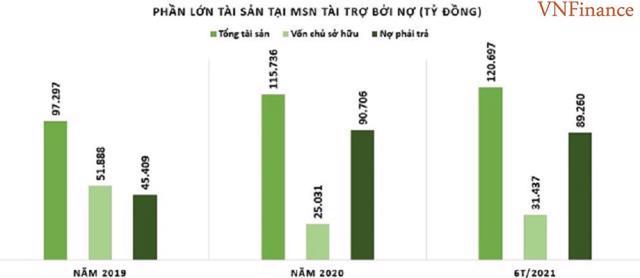 Masan Group (MSN): Điểm mạnh và bất lợi trong bức tranh tài chính - Ảnh 2