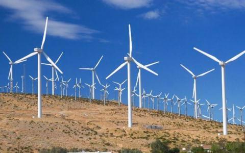Nhiều địa phương kiến nghị gia hạn thời gian áp dụng cơ chế giá FIT cho các dự án điện gió đang chậm tiến độ