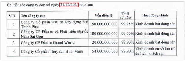 Danh sách công ty con của LDG tại BCTC kiểm toán công ty mẹ năm 2020 không hề có Công ty Cổ phần Hải Duy.