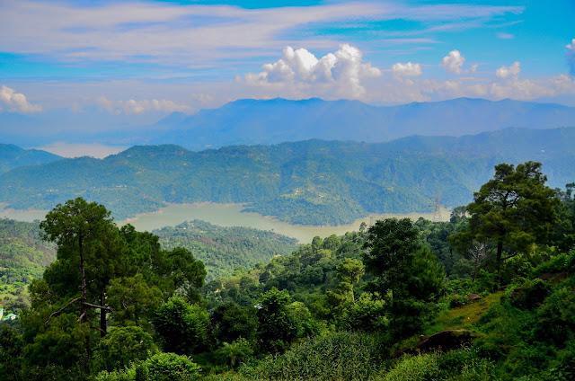 Ban Quản lý Rừng phòng hộ Minh Hóa thực hiện Phương án sử dụng đất đã được phê duyệt, có trách nhiệm theo dõi, quản lý.
