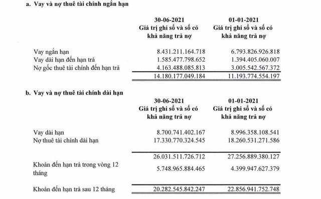 Thua lỗ khủng, Vietnam Airlines (HVN) đối mặt với áp lực thanh khoản ngắn hạn - Ảnh 2