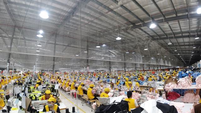 Nghệ An: Đầu tư hạ tầng logistics giúp doanh nghiệp xuất khẩu vượt đại dịch - Ảnh 2
