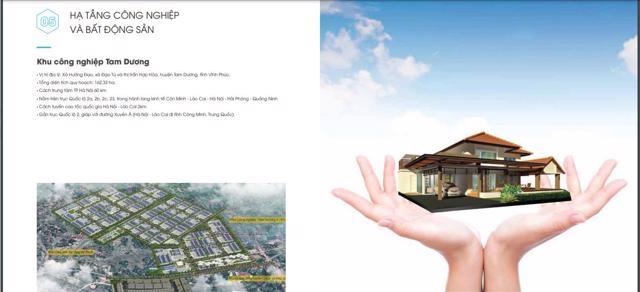 Thông tin dự án KCN Tam Dương, Vĩnh Phúc. Nguồn: Báo cáo thường niên 2020 SHI