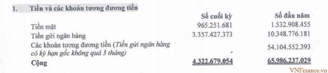 Nguồn: BCTC hợp nhất quý 2/2021 tại LGL.