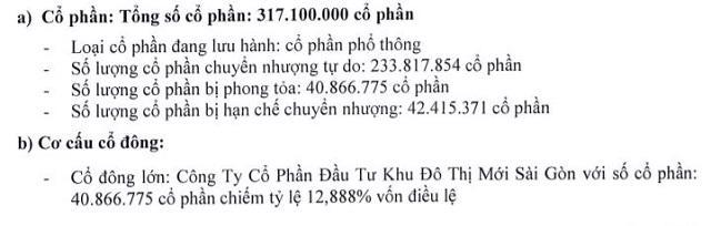 Nguồn: Báo cáo thường niên năm 2020 củaBVB.