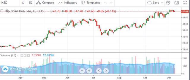 Diễn biến cổ phiếu HSG từ đầu năm đến ngày 8/10.